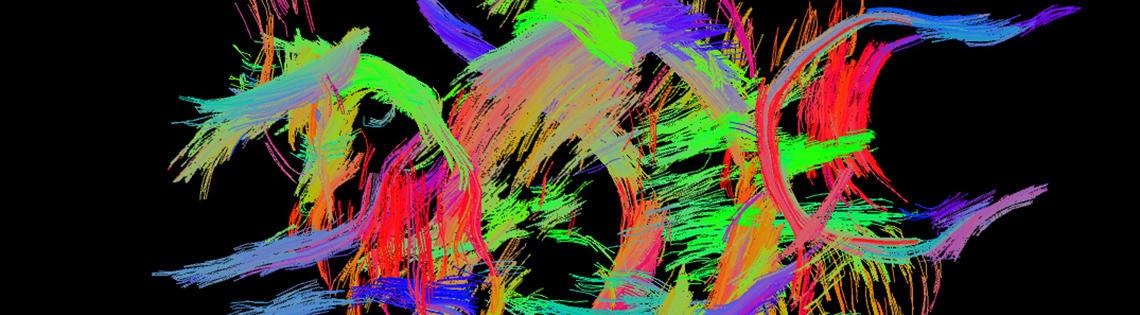 Colorful wispy fibers set against a black background