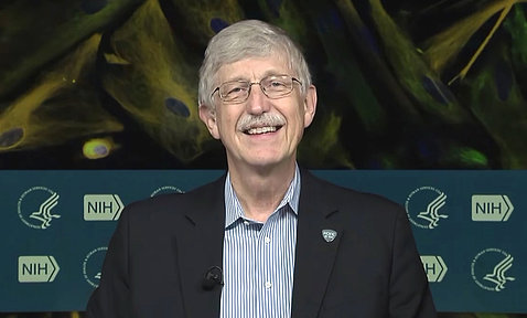 A smiling Dr. Collins sits in studio