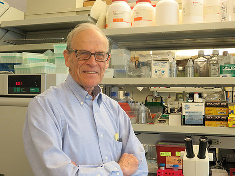Dr. David Schlessinger in his lab