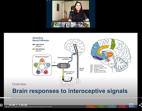 A screen shot during the webinar shows Francos speaking above a slide illuminating different parts of the brain.