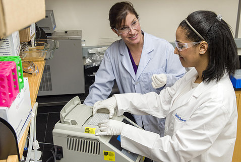 An intern works on a lab experiment with a mentor.