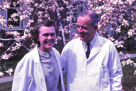 A photo from 1967 shows Herb and Celia Tabor together in their white lab coats in front of a cherry blossom tree.