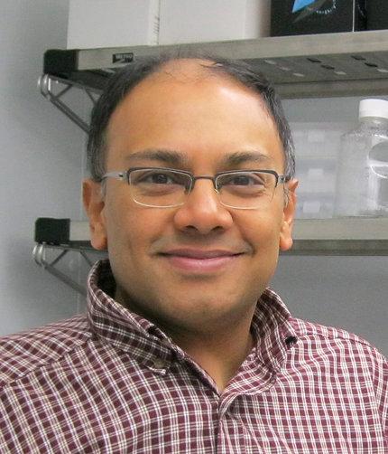 Dr. Banerjee