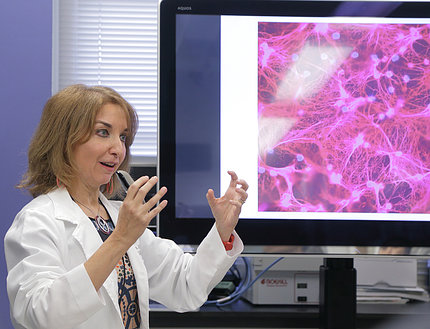 Kaplan describes her research in front a monitor with a pink and purple medical image