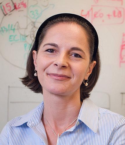 Dr. Yasmine Belkaid