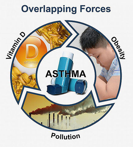 circular graphic linking vitamin D capsules to smoke stacks to asthma to obesity