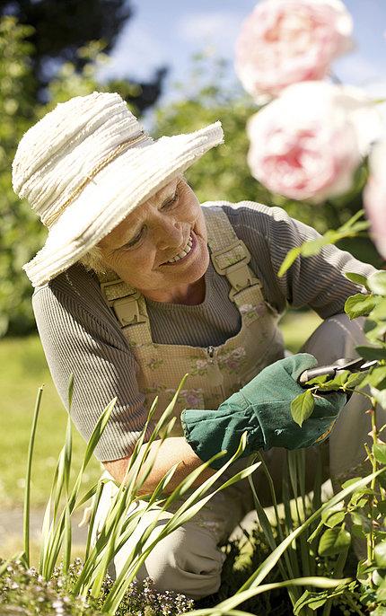 An older woman wearing a hat prunes flower stems in the garden.