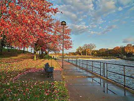 The photo features several trees and park bench alongside the bank of the Flint River
