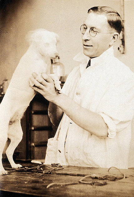 Banting stands holding small white dog who is standing on hind legs on a table.