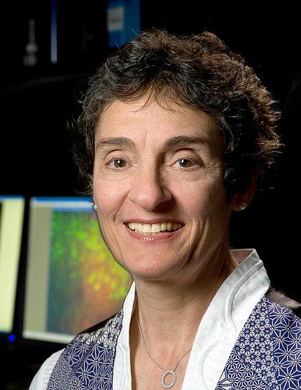 Dr. Carla Shatz