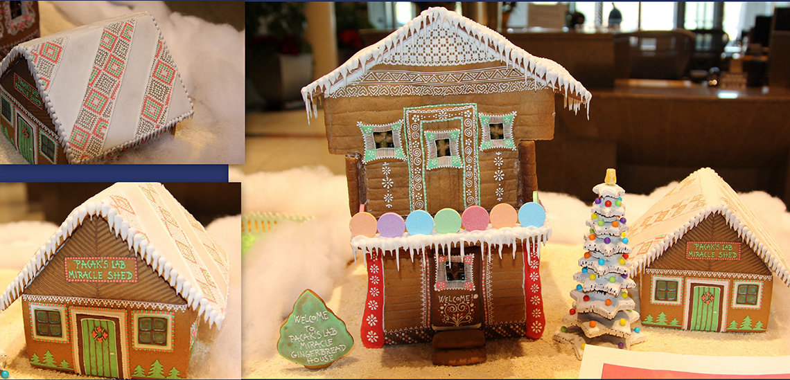 Dr. Pacak's lab, in gingerbread