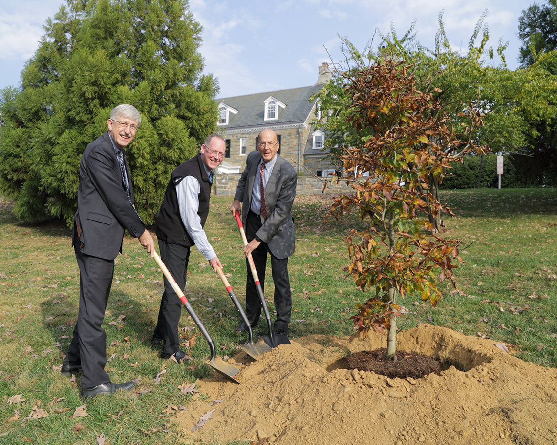 Doctors plant memorial tree at NIH.