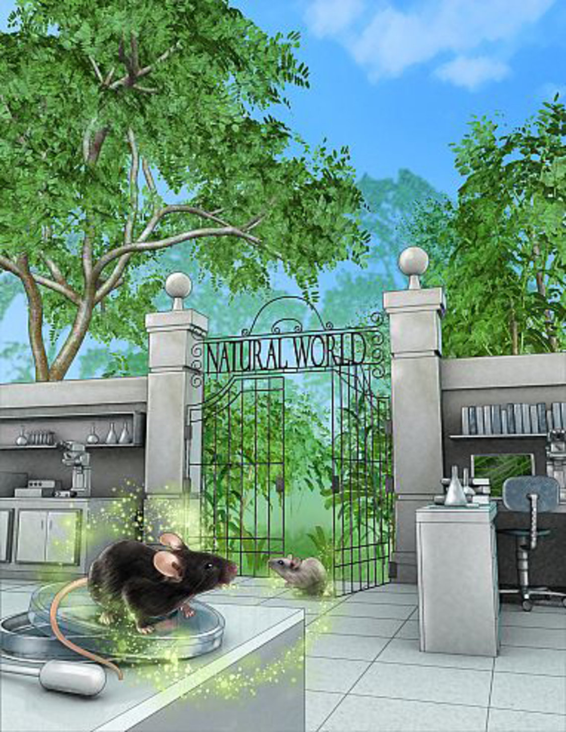 Illustration showing lab mice at the entrance of a park with an open gate marked Natural World