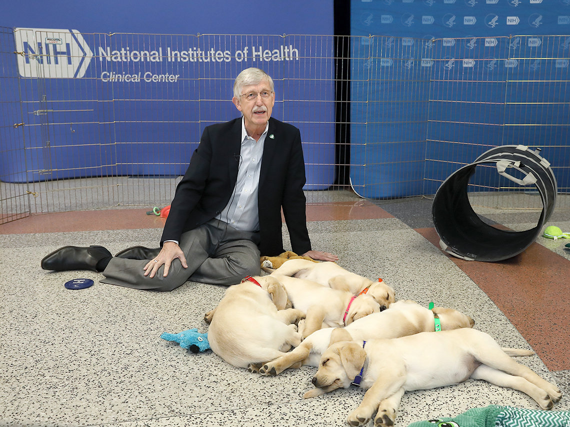 Collins sits on floor with several puppies asleep, nestled together in front of him.