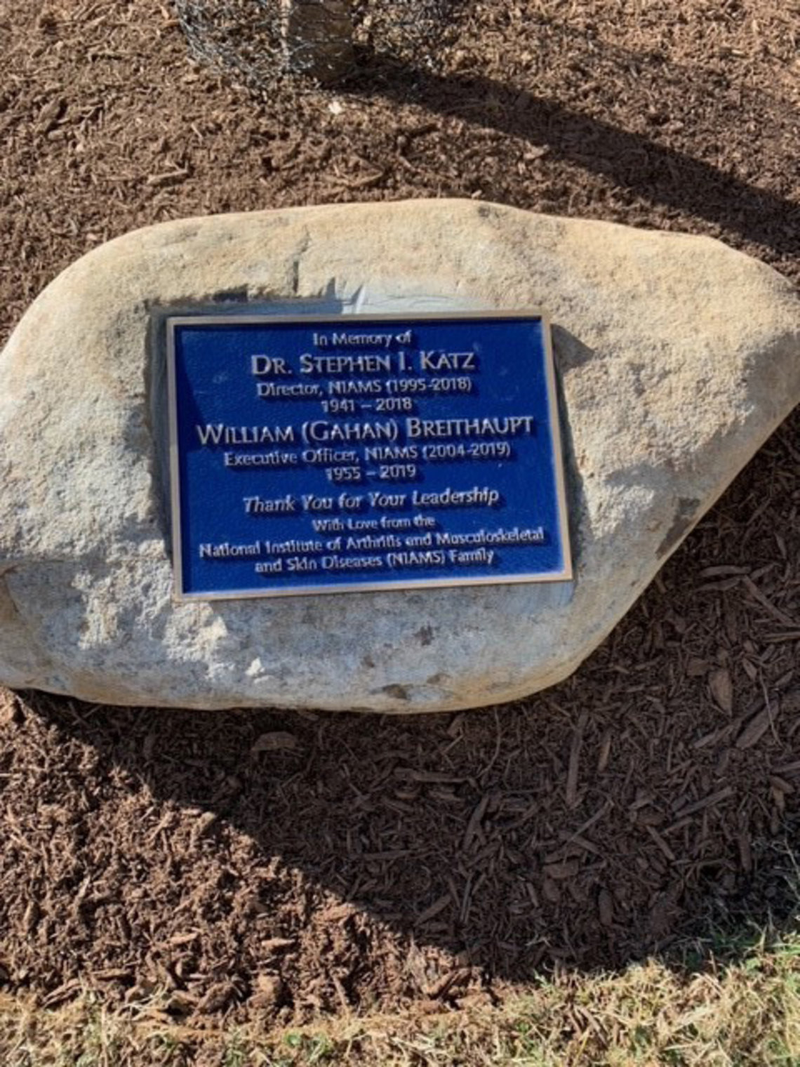 A view of the plaque