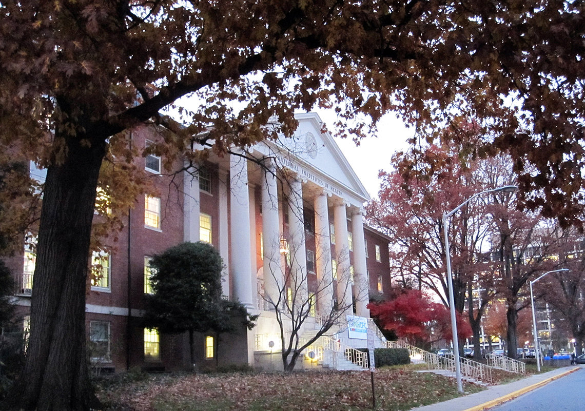 Building front with white columns and grand staircase at dusk in autumn