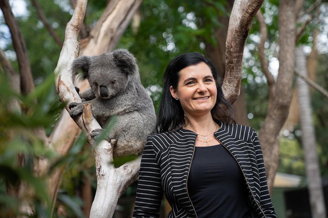 Johnson stands next to a koala climbing a tree