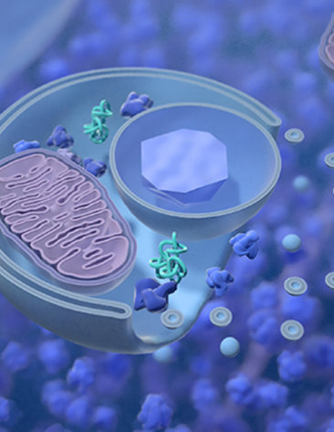 Scientific rendering of pink oval maze surrounded by blue and green bubbles