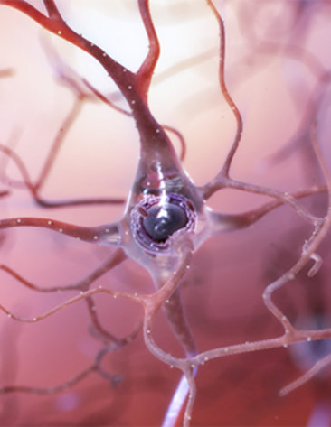A gelatinous blob with an axon tail and dendrites branching off, on a pink background