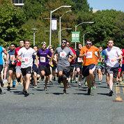 Runners sprint
