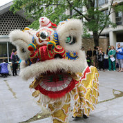 Members of the Wong Family Lion Dance Group perform. Raymond Wong explained that the tradition brings good luck to all and can be found throughout Asia.  PHOTO: KATIE CHAN