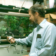 Daly holds a molecular model in his laboratory.  PHOTO: NIDDK, OFFICE OF NIH HISTORY