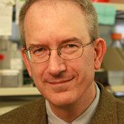 Dr. Louis Staudt